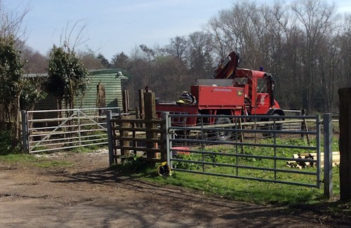 Horse-rescue-29Mar14-03